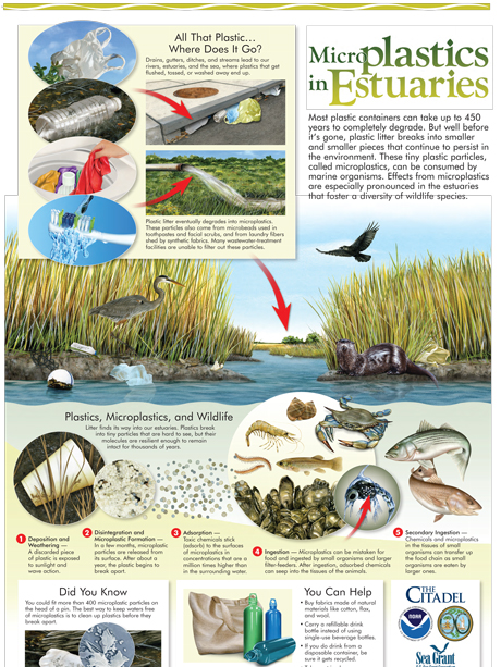Microplastics in Estuaries Poster