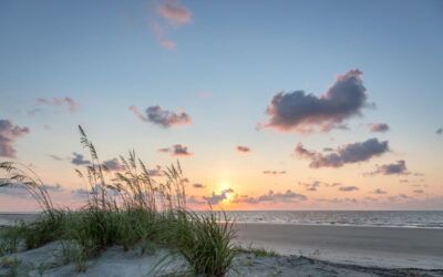 S.C. Sea Grant Releases FY2022-2024 Request for Proposals