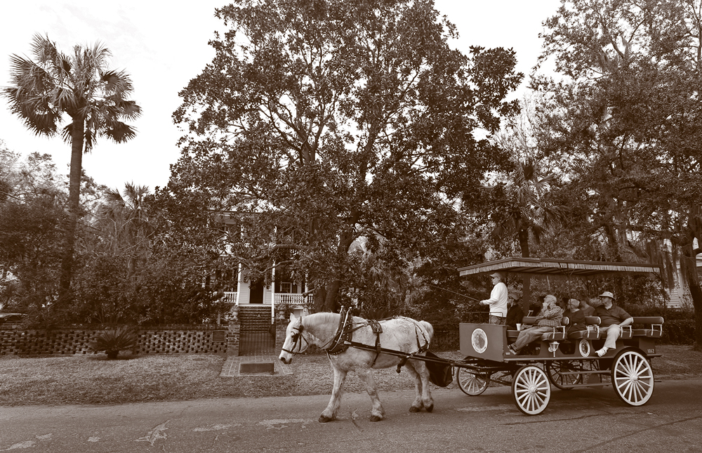 Tourists in a horse-drawn buggy.