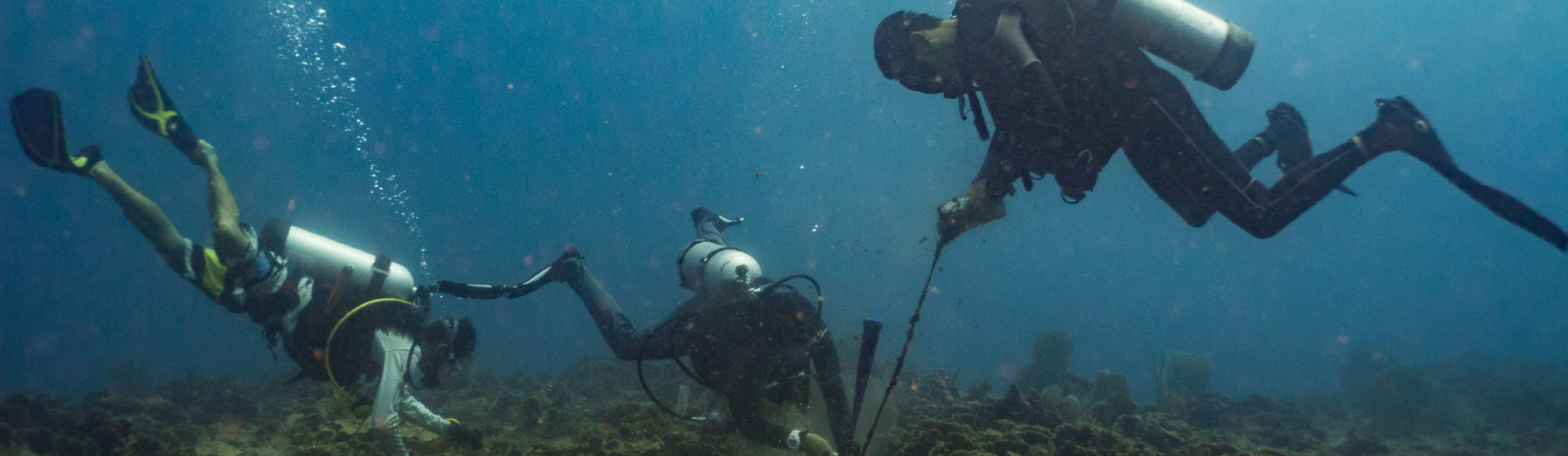 Marine biologist installing a flow meter to study the currents underwater.