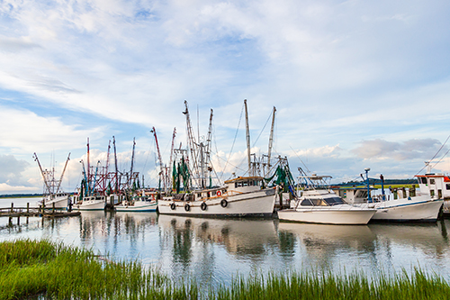 Shrimp boats at the dock.