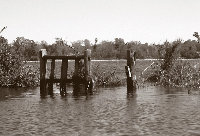 An old wooden gate-like structure in a marsh creek.