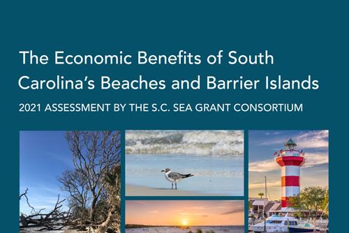 New Economic Report Examines Coastal Ecosystem Services