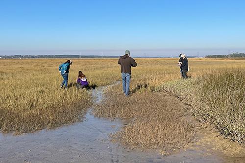 People in a salt marsh.