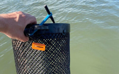 Oyster Growers Receive Floating Cage Tags