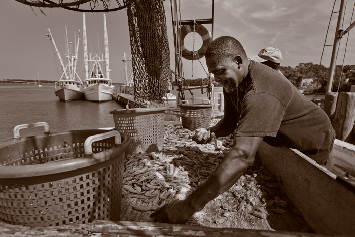 A Black boat worker sorts shrimp by hand.