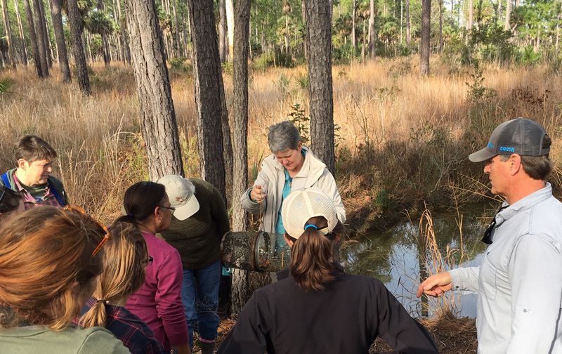 An educator shows a trap with a turtle to a group of onlookers in front of a pine forest.